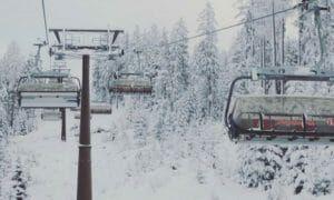 Foto Friday #20 – sneeuw sneeuw sneeuw (en bomen)