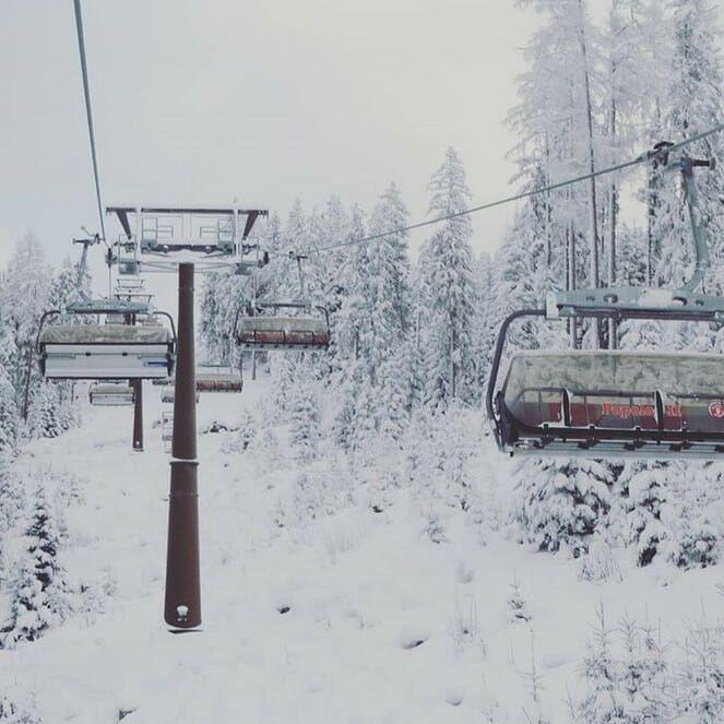 Foto Friday #20 - sneeuw sneeuw sneeuw (en bomen)
