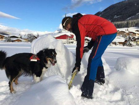 Indrukwekkend: zo trainen lawinehonden in de sneeuw