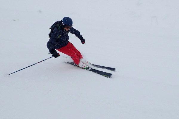 Hard skien elan ski