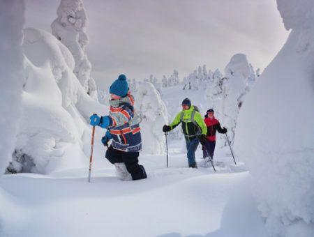Daarom wil je op familie wintersport in Lapland