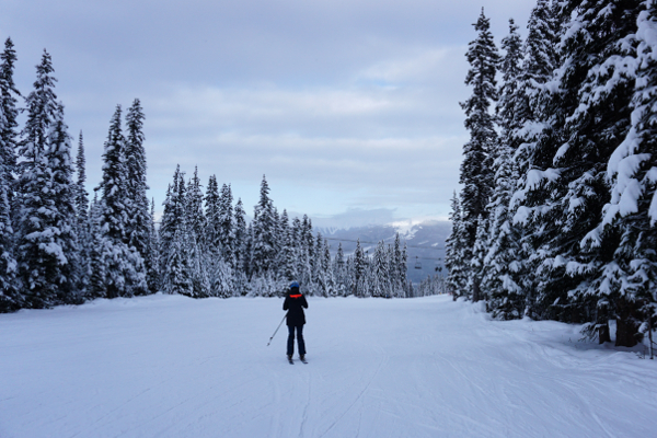 familievriendelijk skigebied marmot basin