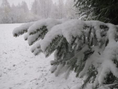 #Winterbeelden – 14 nov. 2017