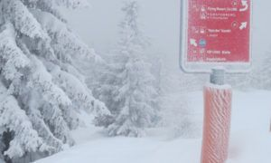 Koning Winter bezig met comeback in Oostenrijk