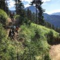 Foto Friday #42- zomer in de skigebieden