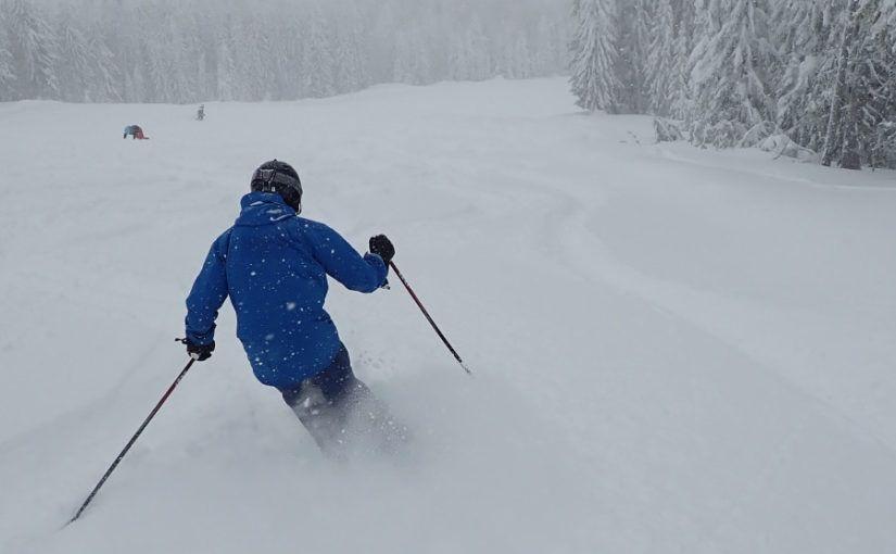 Flex van de skischoenen