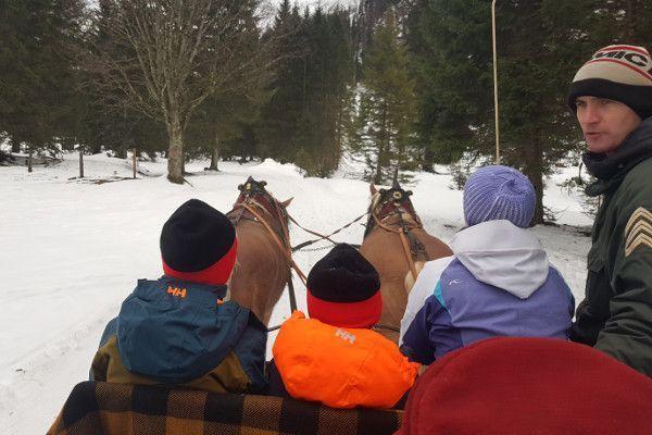 Paardensleetocht obertauern