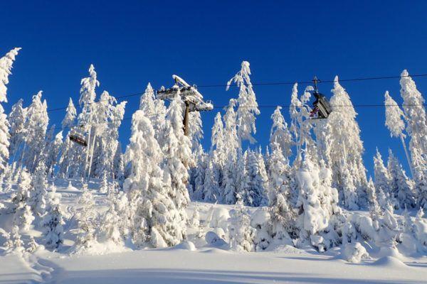 Nooit meer koude voeten bij het skiën dankzij deze 6 tips