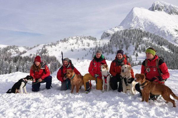 Training tot Lawinehond in Oostenrijk