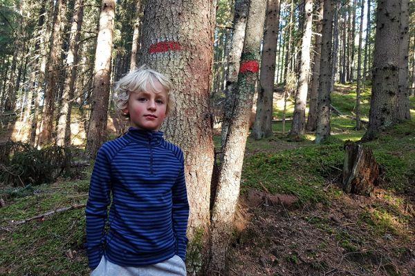 reima thermokleding voor kinderen, nolan in thermoshirt