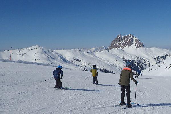 Op zoek naar een skigebied met veel blauwe pistes? Wildkogel Arena