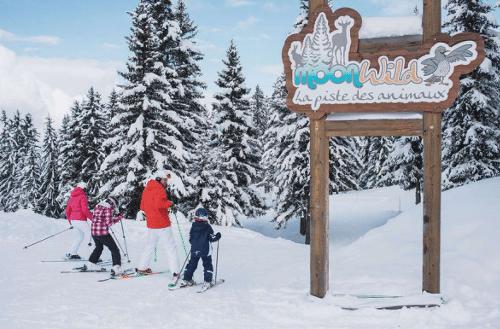 skigebied voor beginners in Frankrijk