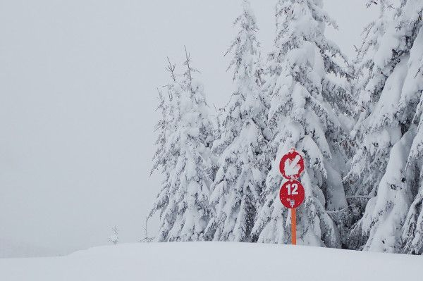 Genoeg sneeuw op de piste in Wagrain