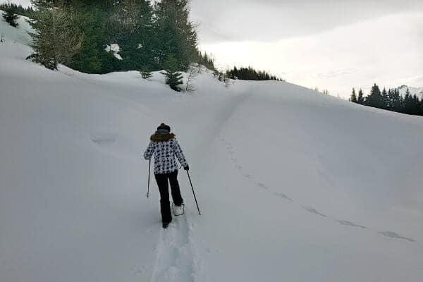 sneeuwschoenwandelen met gids
