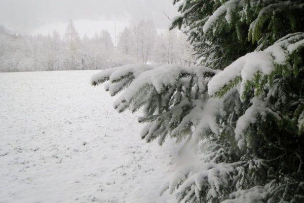 120 cm sneeuw onderweg naar Oostenrijk. Aftellen tot de liften open gaan.