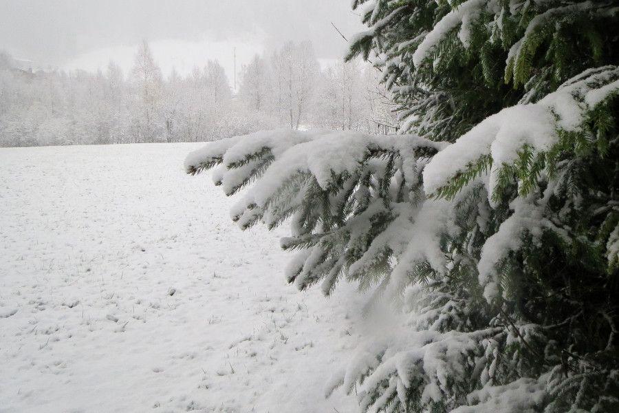 Sneeuw tot in de dalen in Oostenrijk