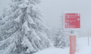 Pak sneeuw onderweg naar Oostenrijk  – tot 65 cm verwacht