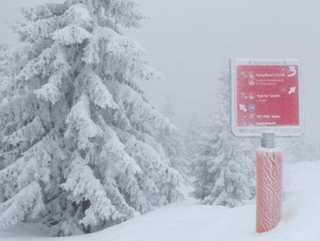 Bergen sneeuw (130 cm!) onderweg naar Oostenrijk