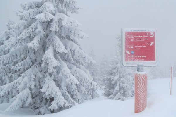 Pak sneeuw onderweg naar Oostenrijk  - tot 65 cm verwacht