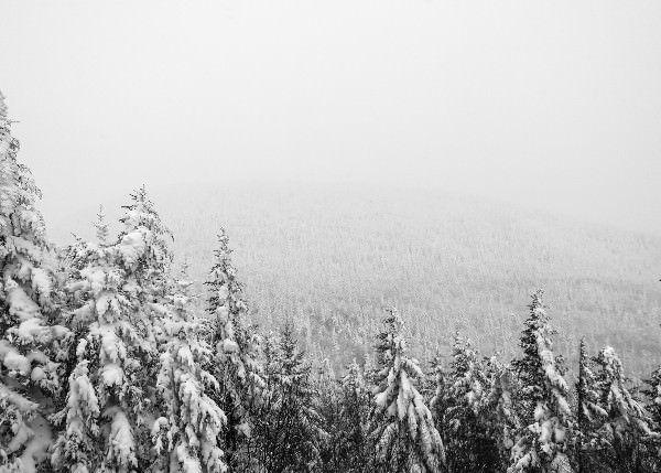 Sneeuwvoorspelling winter 2018