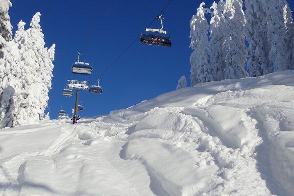 Skischoen tas: de beste tassen voor skischoenen van 2020