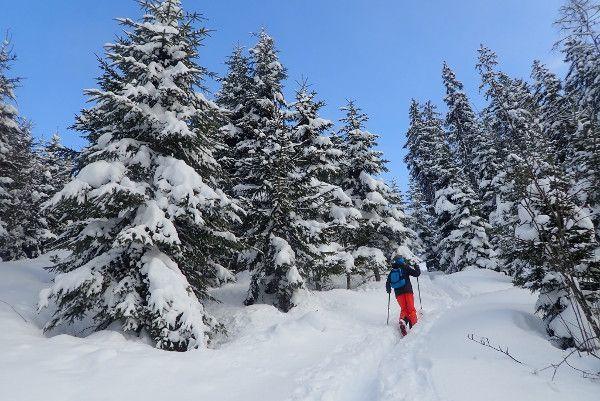 Toerskiën met kind, verse sneeuw en blauwe lucht
