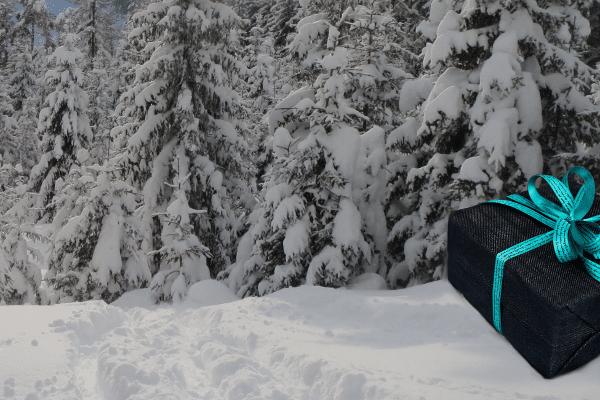 kerstkado wintersporter