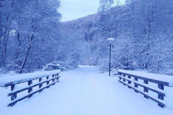 40 cm verse sneeuw