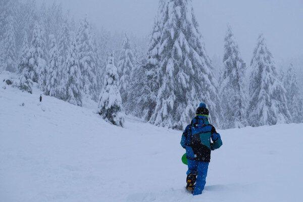 Veel sneeuw op de bomen.