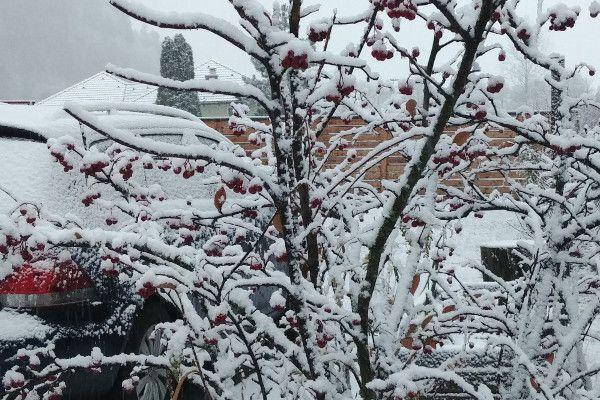 Live sneeuw in Oostenrijk - 26 november Eben im Pongau