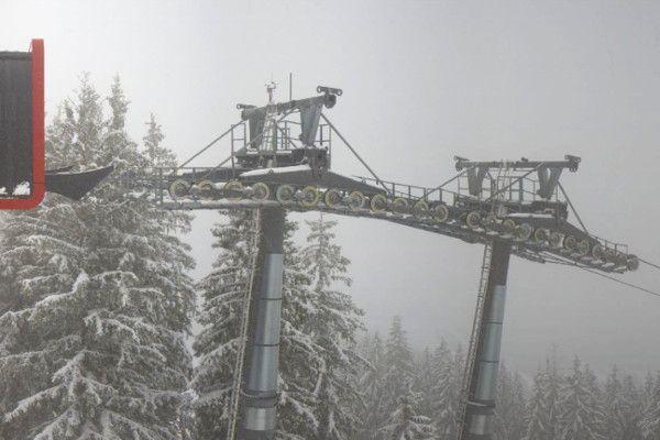 Een verse laag sneeuw op de bomen in Saalbach.