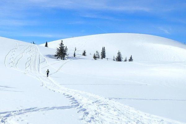 Sneeuwschoenwandelen naar de Gerzkopf bij Filzmoos