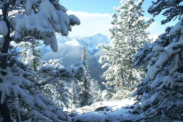 Canada is voor wintersporters een zeer sneeuwzekere bestemming.