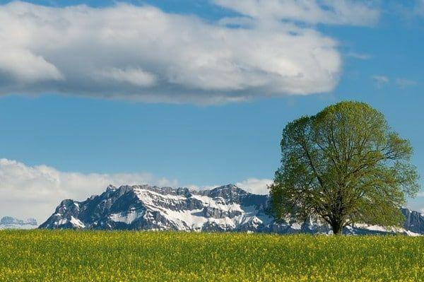 zomer ontmoet winter tijdens de meivakantie in Engelberg