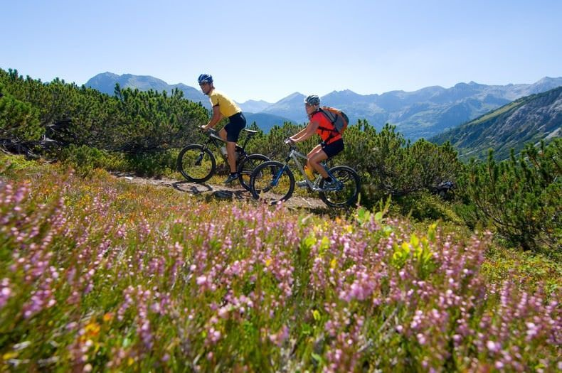 Wintersport activiteiten in de zomer Mountaibiken