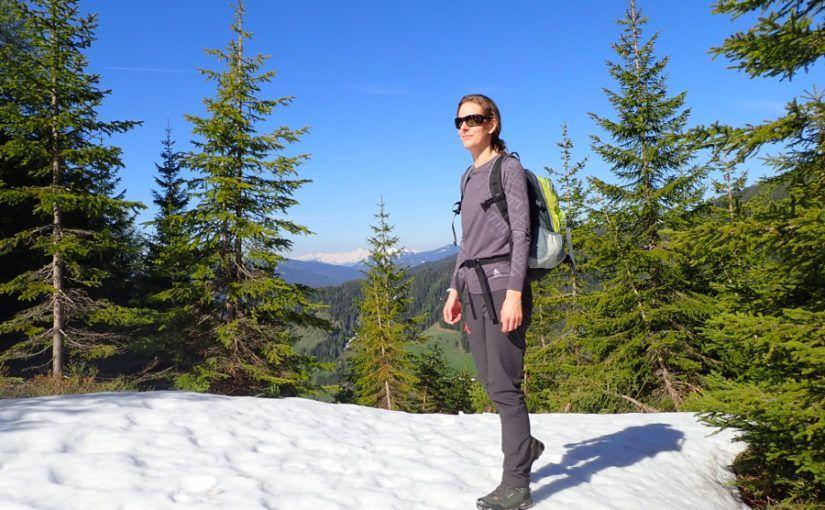 zomer in de alpen